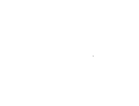 WTKF-Logo-White-Transparent--210-tall